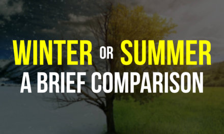 Summer or Winter? A brief comparison