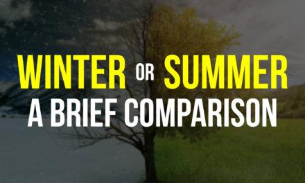 Summer or Winter? A brief comparison