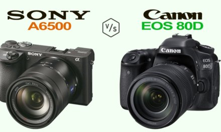 DSLR vs Mirrorless Cameras, which one should you buy?