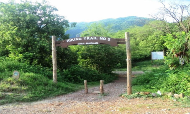 Weekends in the Woods – NUST's Newest Hiking Initiative