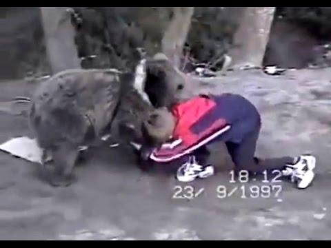 Khabib wrestling a bear at the age of 9